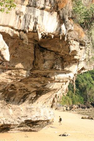 rock to climb on tonsai